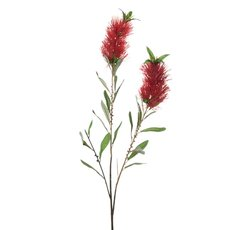 Bottle Brush Spray x2 Red