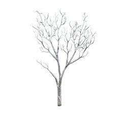 Coral Tree Twisted Branch PVC Silver (96cmH)