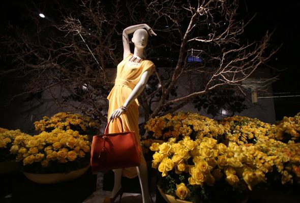 The Enchanted Florence David Jones Flower Show 2013