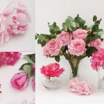Pink Flowers Koch & Co