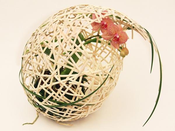 Mark_Pampling_Floral_Inspiration