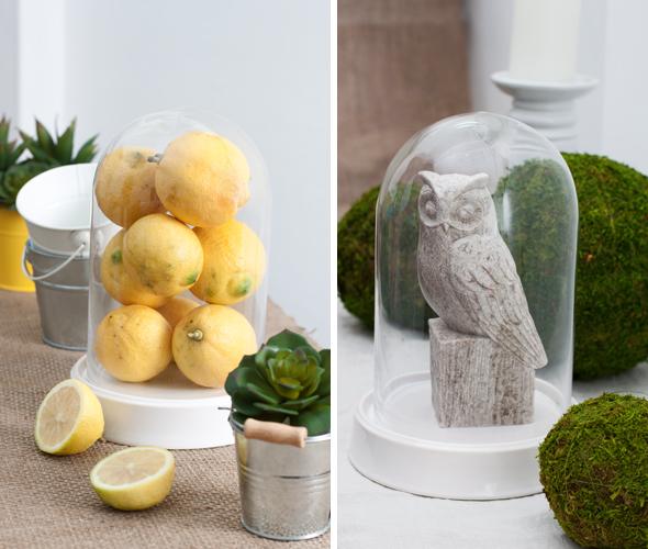 Cloche_Lemons_Bell_Jar_Sculpture_Display