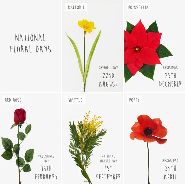 National Flower Days Koch & Co