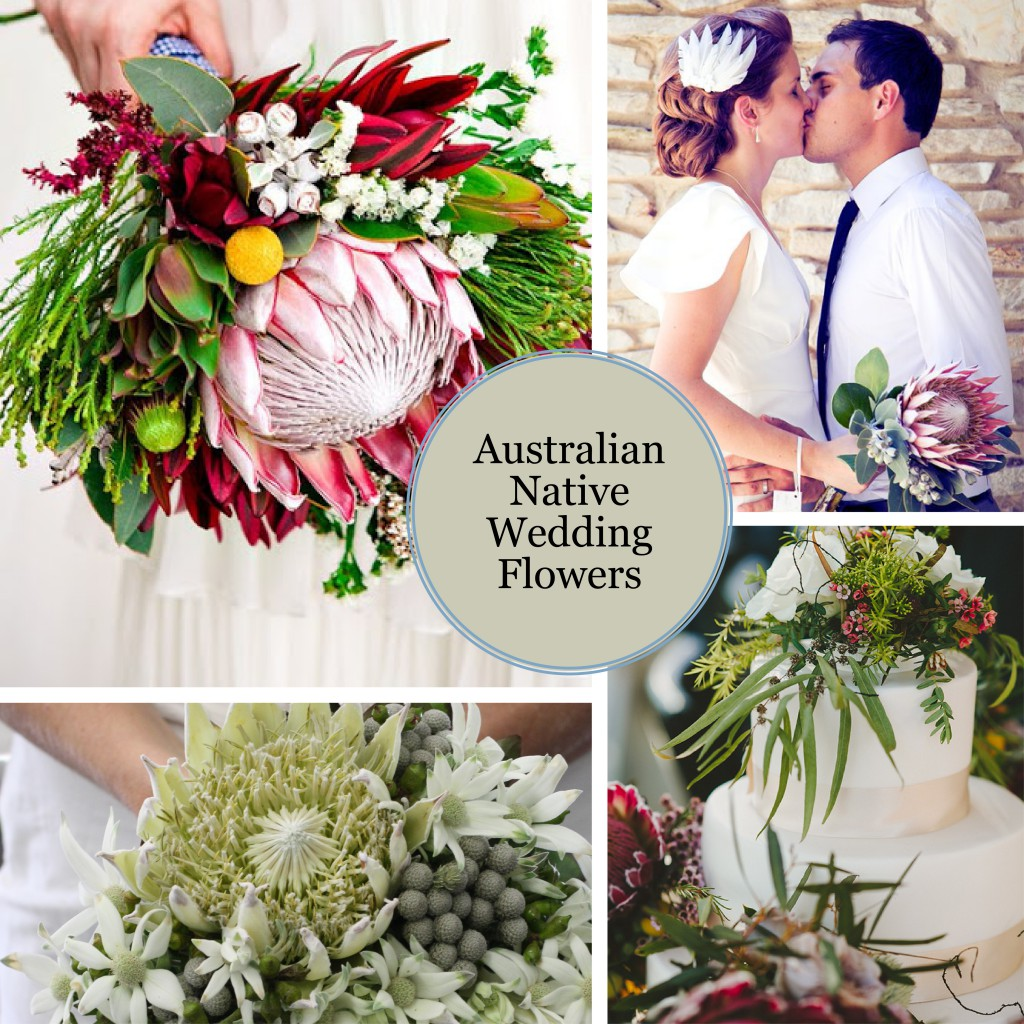 Koch & Co Australian Native Wedding Flowers