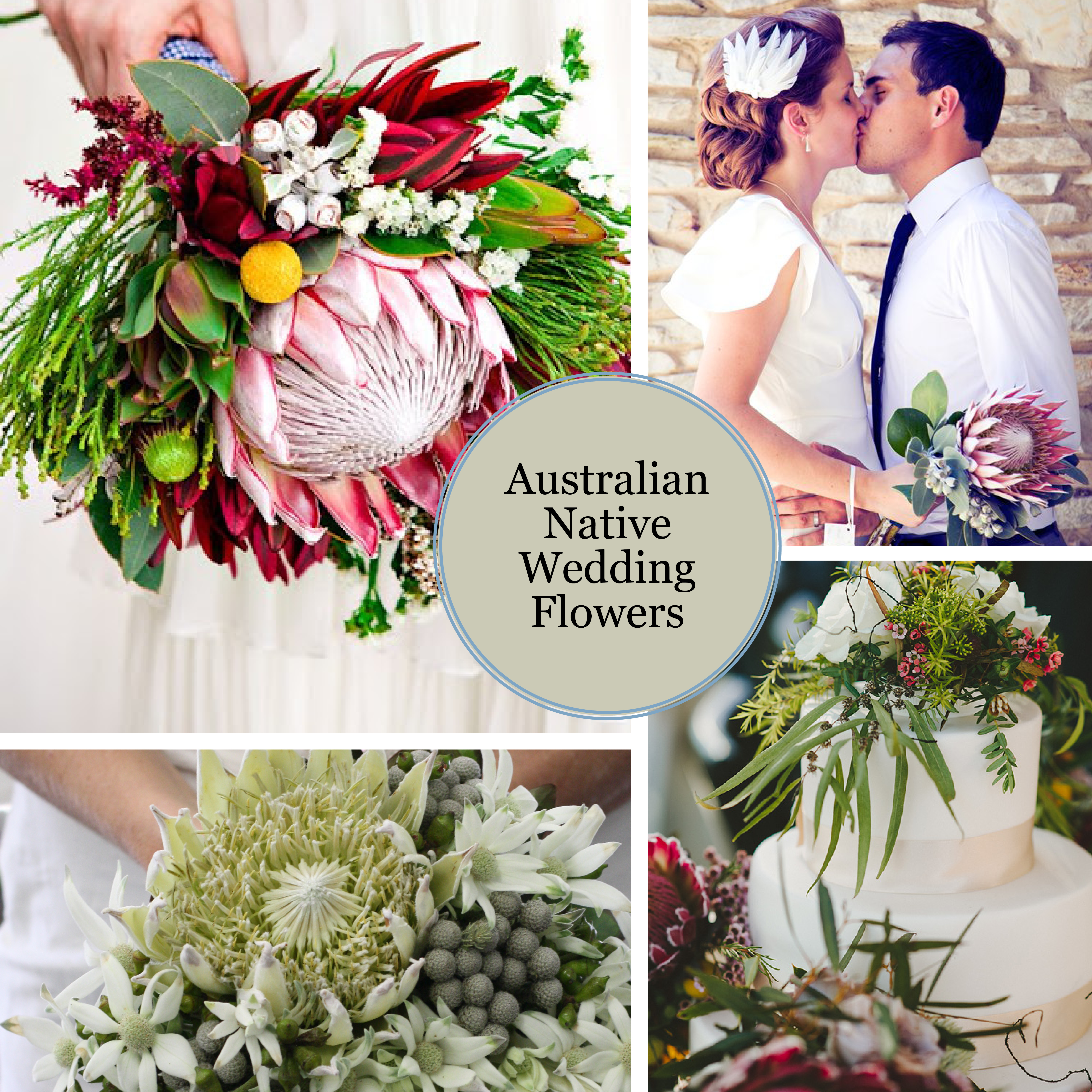 Country wedding ideas koch co australian native wedding flowers junglespirit Image collections