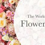 The Worlds Hardest Flower Quiz