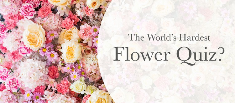 The Worlds Hardest Flower Quiz