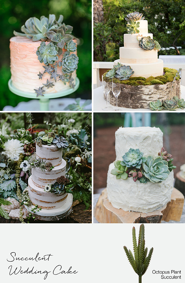wedding cake succulents 9 ways to decorate with succulents for weddings amp events 25813