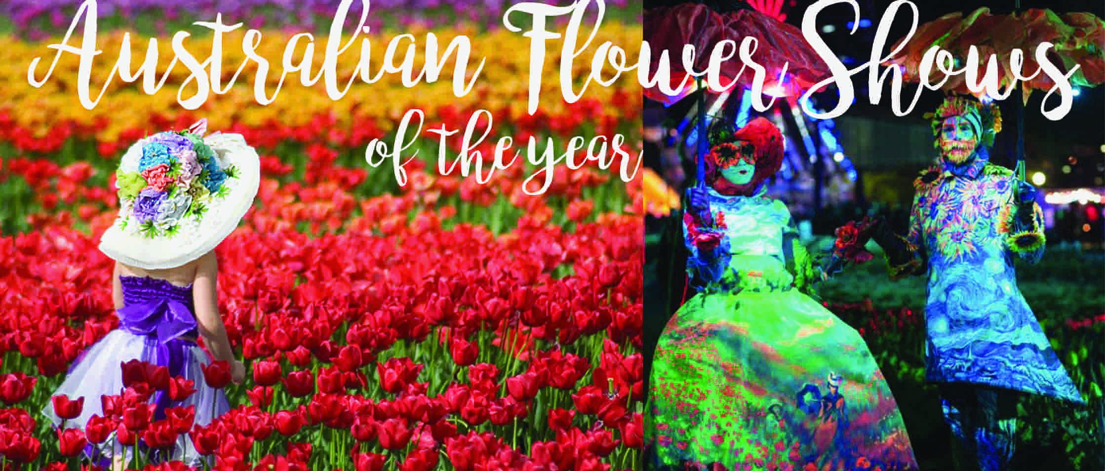 Australias Best Flower Shows 2017 The Koch Blog