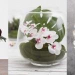 Inspirations Gallery Blog