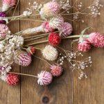 Dry & Pres Flowers Blog header image