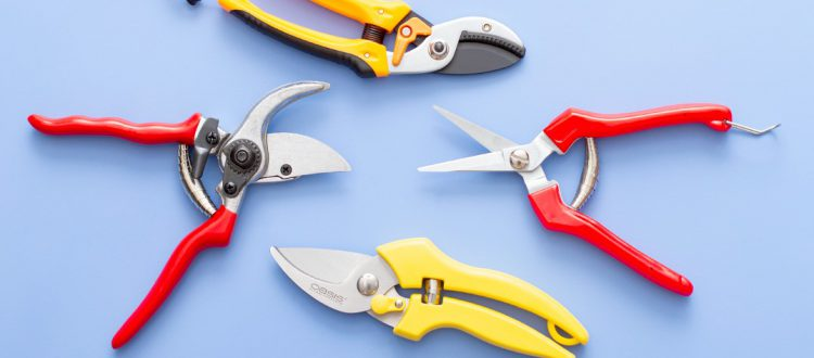 new secateurs blog header