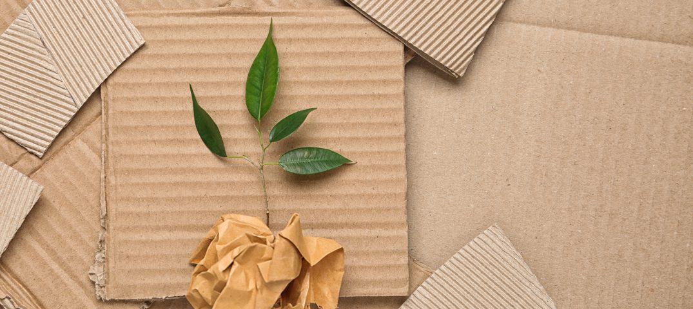 Eco-Friendly packaging blog header