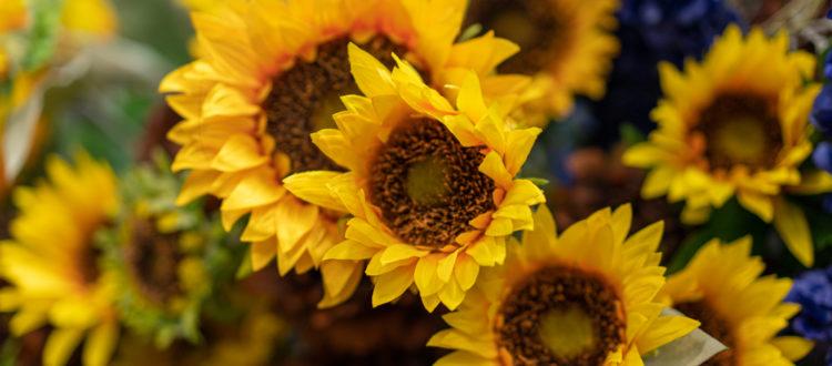 Fake Flower Blog Header