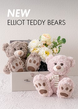 Elliot Teddy Bear