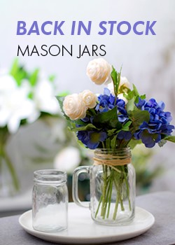 BACK IN STOCK MASON JARS