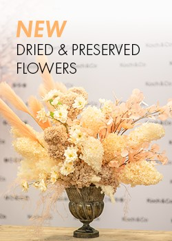 NEW DRIED & PRESERVED FLOWERS