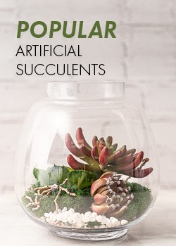 Artificial Suculents