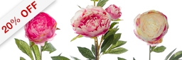 New Peony Stem & Spray Value Pack