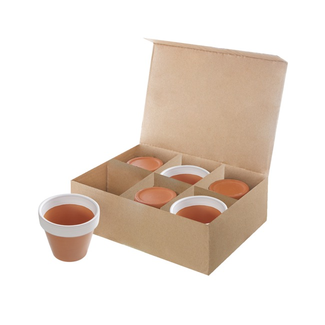 Terracotta Pots - Clay Pots Online at Wholesale Prices