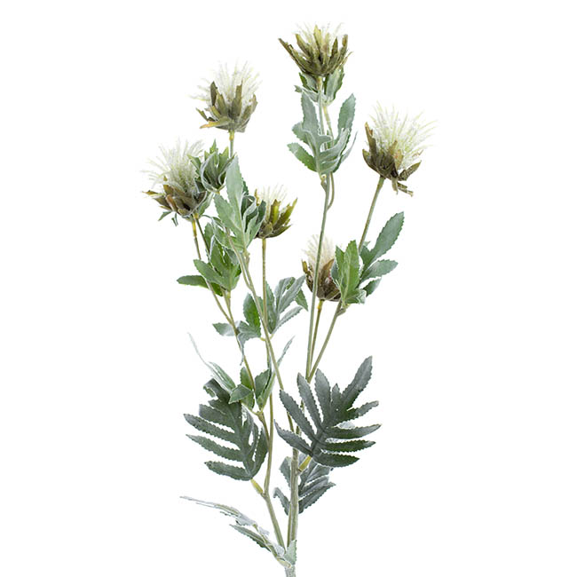Thistle Flower White (83cmH)