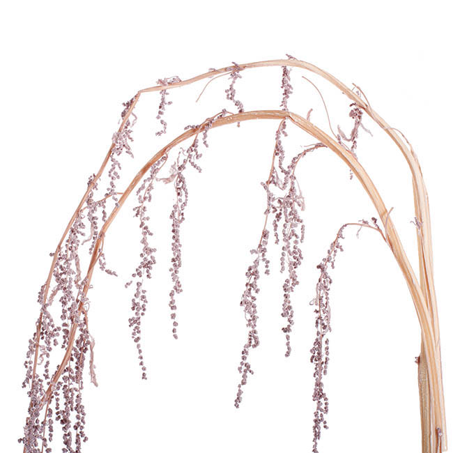 Preserved Dried Amaranthus Flower 80-120cm Natural Lilac