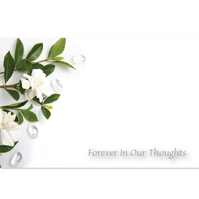 Cards Gardenia Forever In Our Thoughts(10x6.5cmH) Pack 50