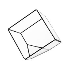 Geometric Terrariums - Geometric Glass Terrarium Cube Black (15x15x15cm)