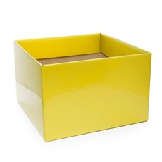 Posy Box Large Yellow (22x14cmH)