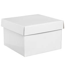 Gift Box with Lid Large Flat Pack Gloss White (22x14cmH)
