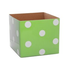 Polka Dots Gloss Mini Posy Box Mint (13x12cmH)