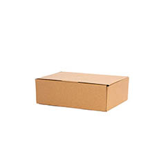 Mailing Boxes - Kraft Mailing Box Pack 10 A5 Small Brown (220Wx160Dx60mmH)