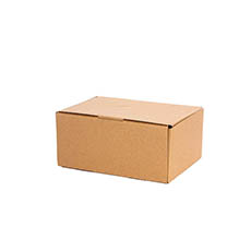 Mailing Boxes - Kraft Mailing Box Pack 10 A5 Small Brown (220Wx160Dx100mmH)