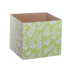 Floral Mini Posy Box Mint (13x12cmH)