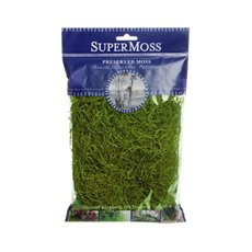 Spanish Moss - Spanish Moss Preserved Grass Green (110gm Bag)