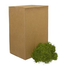 Spanish Moss - Spanish Moss Preserved Bulk Grass Green (4.55kg Box)