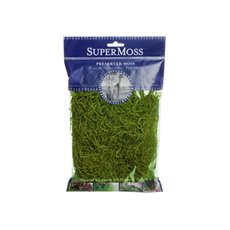 Spanish Moss - Spanish Moss Preserved Grass Green (55gm Bag)