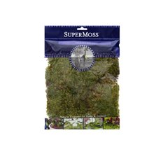 Natural Moss - Mood Moss Preserved Grass Green (110gm Bag)
