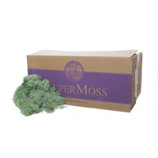 Reindeer Moss Preserved Bulk Moss Light Green (3lb 1.36kg)