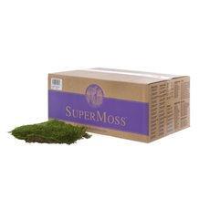 Natural Moss - Sheet Moss Preserved Bulk Moss Dark Green 1.3kg