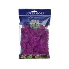 Reindeer Moss Preserved Bag Fuchsia (55gm 2oz)