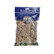 Reindeer Moss - Reindeer Moss Preserved Bag Natural (55gm Bag)