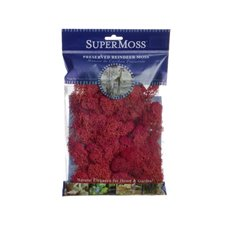 Reindeer Moss - Reindeer Moss Preserved Bag Red  (55gm 2oz)