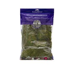 Natural Moss - Mood Moss Preserved Grass Green (225gm Bag)