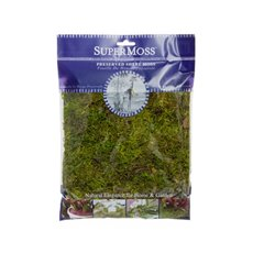 Reindeer Moss - Forest Moss Preserved Bag Moss Fresh Green (225gm)