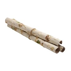 Paper Birch Stick Bundle of 3 White Green (45cmH)