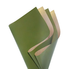 Coloured Kraft Paper - Brown Kraft Paper Coloured DUO 60gsm Moss (53x76cm) Pack 100