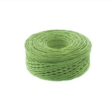 Paper Twine Lime (2mmx100m)