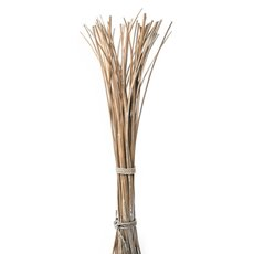 Willow Sticks Split Bundle Natural (70cmH)