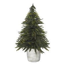 Decorative Christmas Trees - Christmas Tree Norfolk Pine in Cement Pot Green (50cmH)